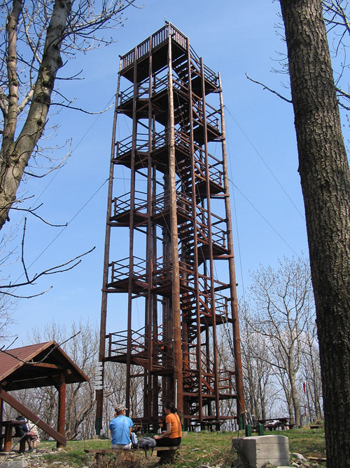 The Lookout Tower at the Velka Homola Hill