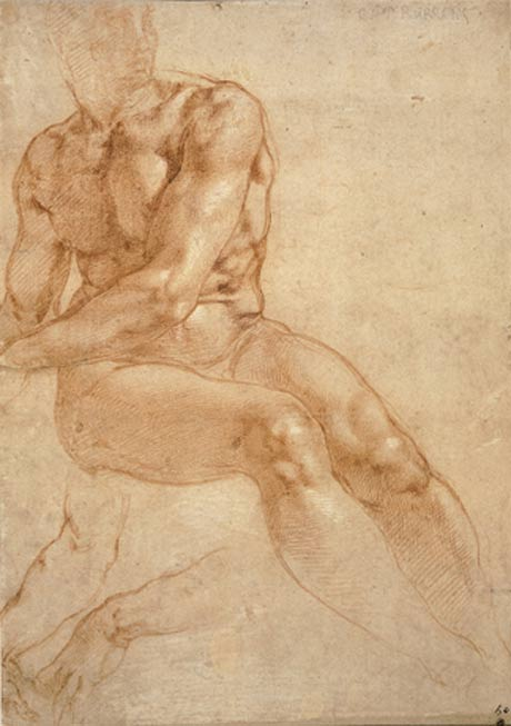 Michelangelo Buonarroti, exposition in Albertina