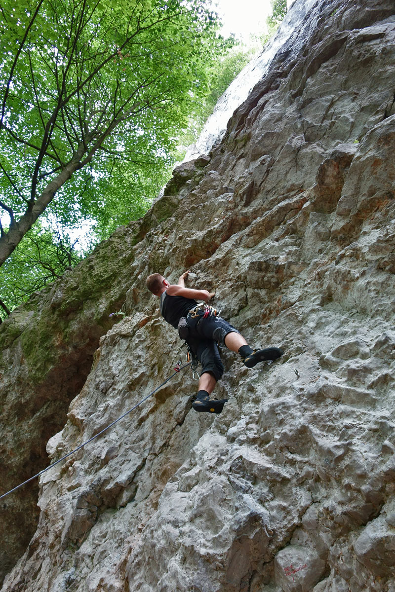 This climbing route could be called Bellflower