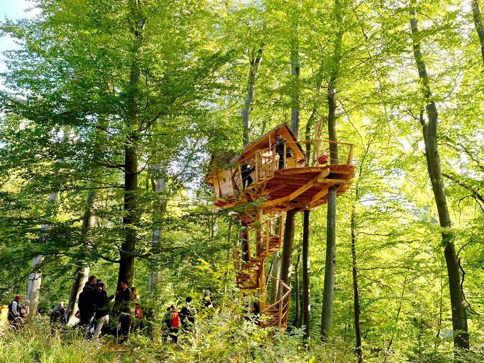 Tree House in Bratislava Forests