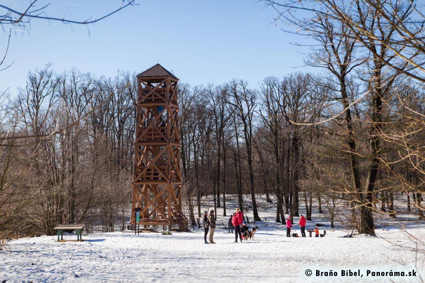 Wooden sightseeing tower in Bratislava forests in Winter