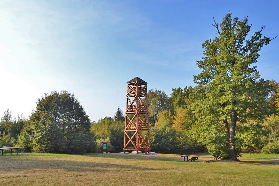 Wooden sightseeing tower in Bratislava forests