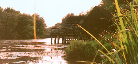 Water Mill in Tomasikovo