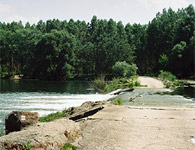 One of many cascades in the Danube River branches